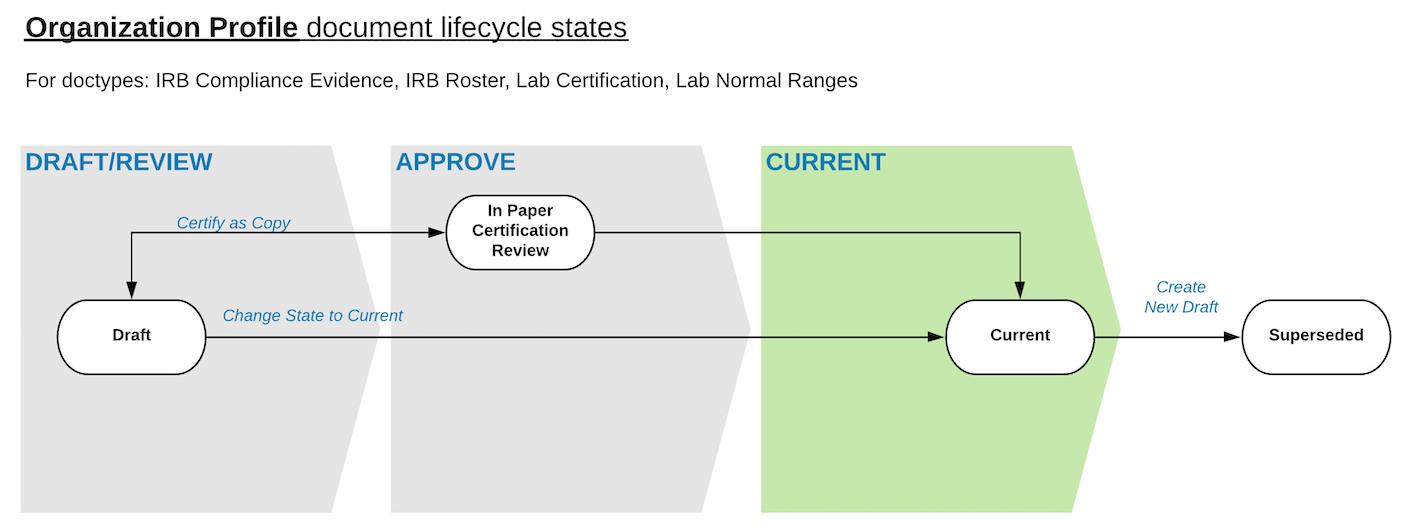 Organization Profile Workflow